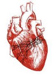 krwawiące serce